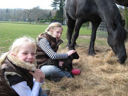 Met paard Lucy en een lammetje van een paar dagen oud